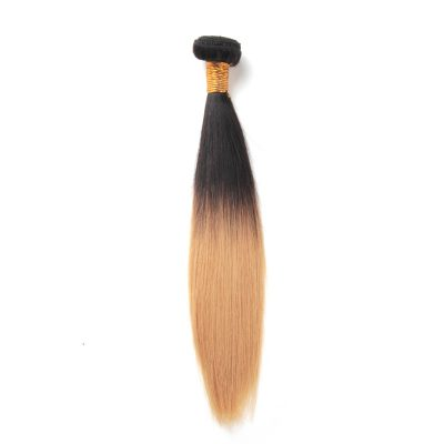 Brazilian Hair Ombre Weave Color 27 Brazilian Hair Straight