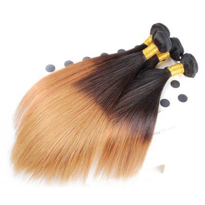 Ombre Brazilian Virgin Hair Straight 1B#27 Ombre Hair Extensions